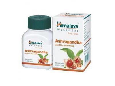 ASHVA-GANDHA x 60 kaps. STRES i WYCZERPANIE